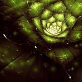 Green abstract flower with sun rays — Stock Photo