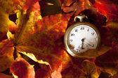 Autumn background. — Stockfoto