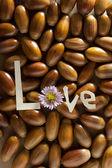 Concept of love. — Stock Photo