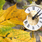 Autumn — Stock Photo #13746503