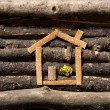 Wooden house — Stock Photo #14882987