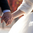 Wedding theme, holding hands newlyweds — Stock Photo