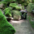 Stock Photo: Moss-covered stone