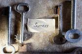 Key to success — Stock Photo