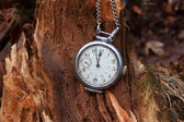 Vintage clock on a wooden stump in a forest — Stock Photo