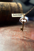 Key to success — Foto Stock