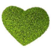 緑の草の心. — ストック写真