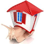 Snail with small house. Isolated. — Stock Photo