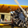 Boeing Stearman — Stock Photo