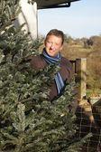 男人与他的圣诞树 — 图库照片