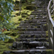 Rustic stairs — Stock Photo