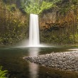 Stock Photo: Pacific Northwest waterfall