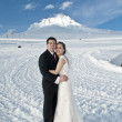 Winter wedding in the snow — Foto de Stock