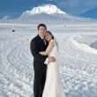 Winter wedding in the snow — Foto Stock