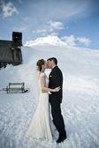 Winter wedding in the snow — Stock Photo