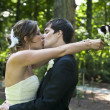 Newlyweds kissing — Stock Photo