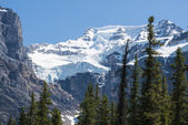 Mountain with glaciers, Banff National Park — Stock Photo