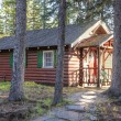 Log cabin — Stock Photo #21543727
