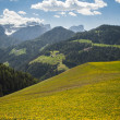 Spring pastures in Dolomite Mountains of northern Italy — Stock Photo