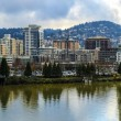 View of Portland, Oregon — Foto Stock