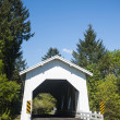 White covered bridge — Stock Photo