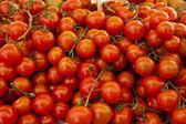 Raw plum tomatoes — Stock Photo