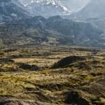Mt. Saint Helens — Stock Photo #21640717