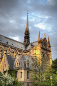 Evening light on Notre Dame — Stock Photo