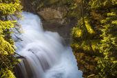 Rapids, Banff National Park — Stock Photo