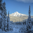 Mt. Hood, winter, Oregon — Stock Photo