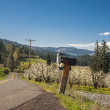 Rural road, Hood River Valley, Oregon — Stock Photo