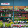 Stock Photo: Flower shop in Paris, France