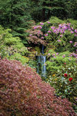 Waterfall in a garden — Stock Photo