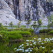 Mountain lake and waterfall — Stock Photo
