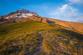 Sunset glow, Mt. hood, Oregon — Stock Photo