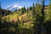 Mount rainier en otoño — Foto de Stock