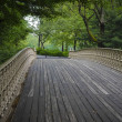Stock Photo: Bridge in Central Park, New York City