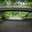 Bridge in Central Park, New York City — Stock Photo