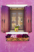 Pink wall and shutters on window, Burano, Italy — Stock Photo