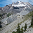 Rocky slopes of Mt. Hood, Oregon — Stock Photo #33286863