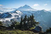 Snowcapped Mount Baker, Ptarmigan Ridge, Washington state Cascad — Stock Photo