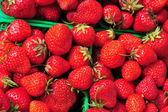 Festival of Strawberries — Stock Photo