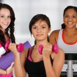 Group Working Out — Stock Photo #12005988