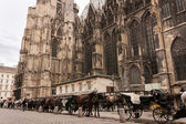 St. Stephen's Cathedral in Vienna Austria — Стоковое фото