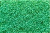 Green sponge background — Stock Photo