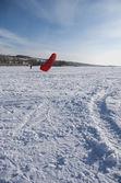 Winter kite — Stock Photo