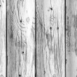 Wood grain — Stock Photo #25058517