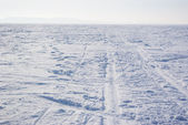 Footprints in the backdrop of snow-covered field — Stock Photo