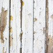 Stock Photo: Wood grain