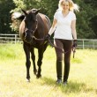 Stock Photo: Horse rider and horse